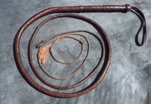 whip1